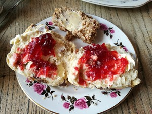 Scone and jam at the Olde Young Tea House