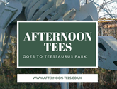 Afternoon Tees goes to Teessaurus Park (2).png